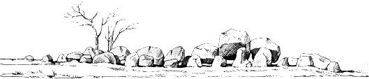Gesellschaft für Steinzeitforschung